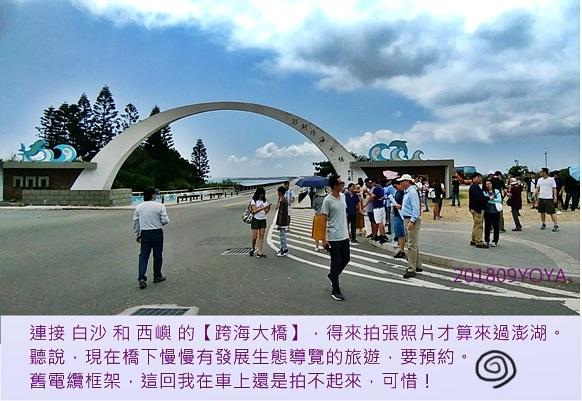橋2-P_20180919.jpg