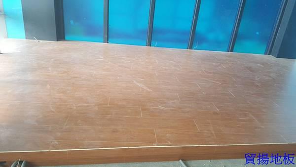 貿揚地板-柚木色-架高區-1.jpg