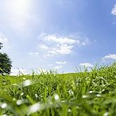 green-grassland-under-sky-photo-008.jpg