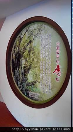 梅子工廠010.JPG