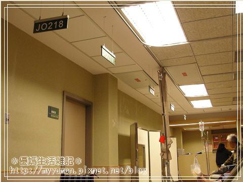 20110319001.jpg