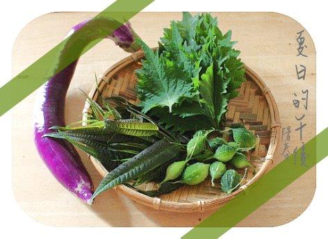 鮮摘食蔬.jpg