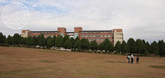 2010121101.jpg