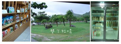 2008110911.jpg