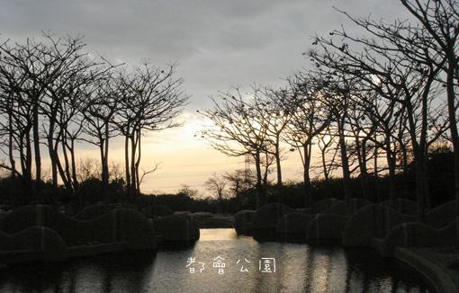 2009012504.jpg