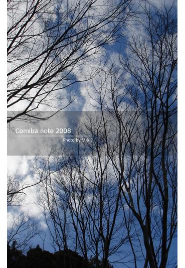 2009020801.jpg