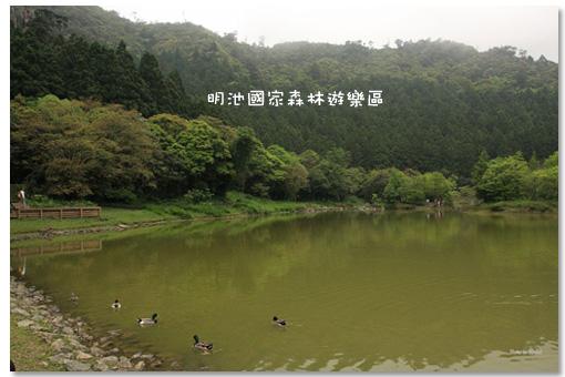 2009050101.jpg