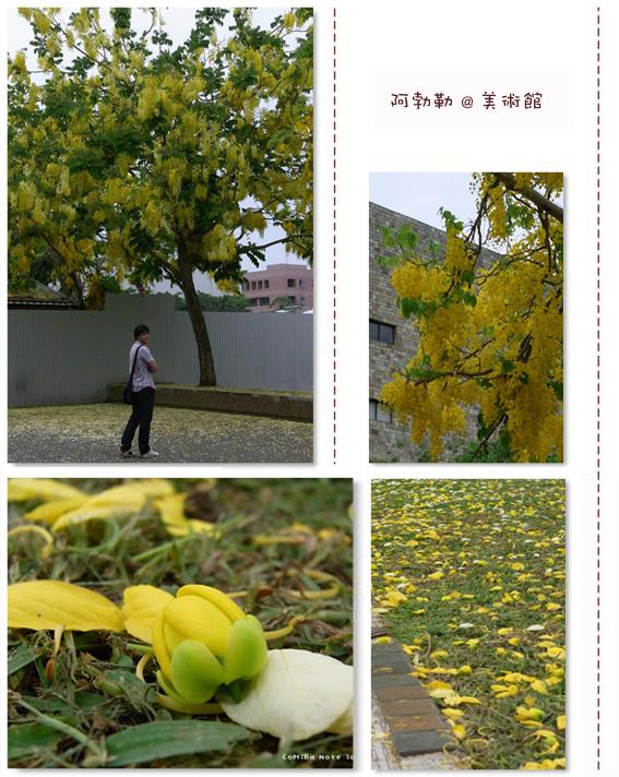 2009052802.jpg
