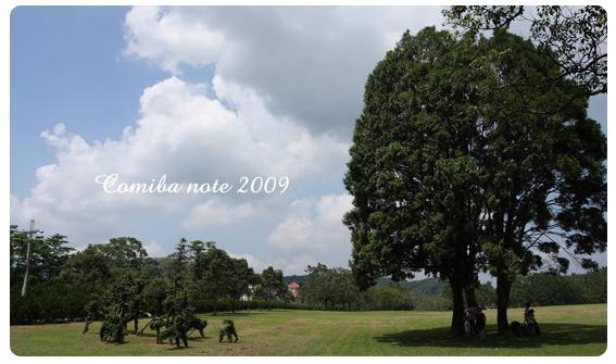2009112905.jpg