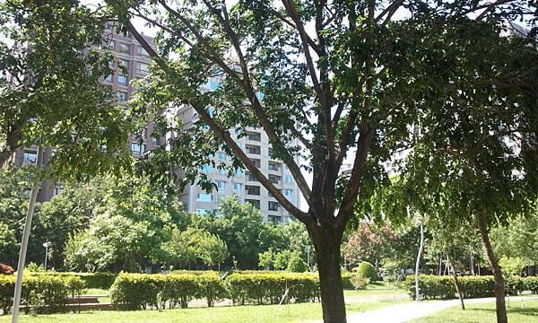 2012-09-16 13.44.33綠園道