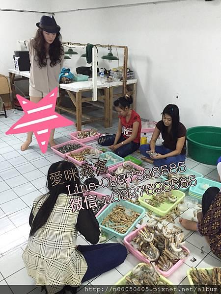 愛咪燕窩-零售&批發-印尼燕