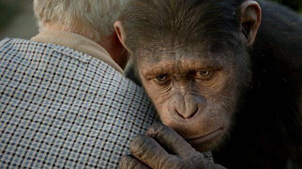 猩球崛起(Rise of The Planet of The Apes)