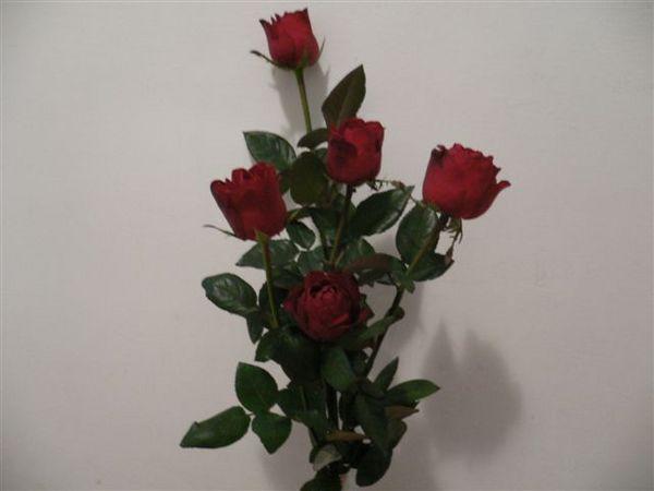 主辦單位很有心,每人都有玫瑰唷