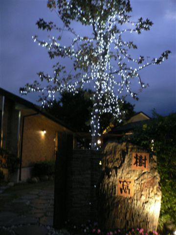 金澤居附設的「樹窩餐廳」