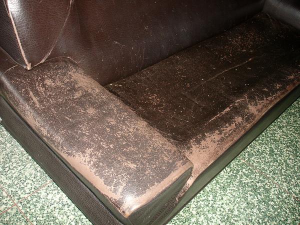 沙發龜裂如何處理前照片2.JPG
