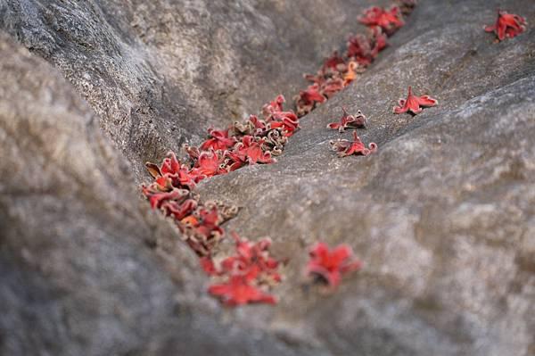 六龜天台山