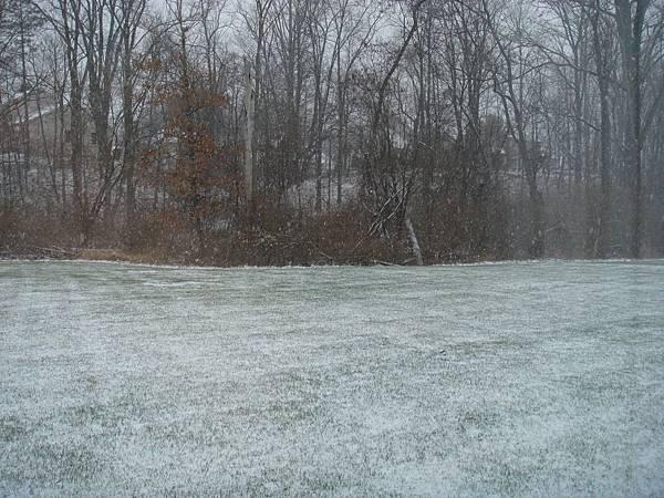 窗外的景~~第二天下起大風雪~我們被困在屋子裡了