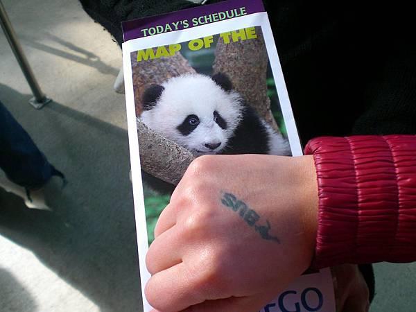 Day 8- Zoo: 動物園的門票是我們上網買滴, 比原價便宜許多, 一張只要15元, 所以以後千萬要上網買, 才不會買到貴的.