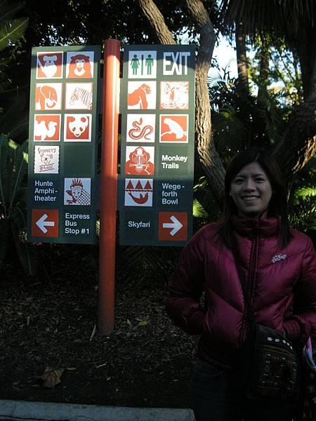 Day 8-Zoo: 聖地牙哥的動物園蠻大的, 物種也很多