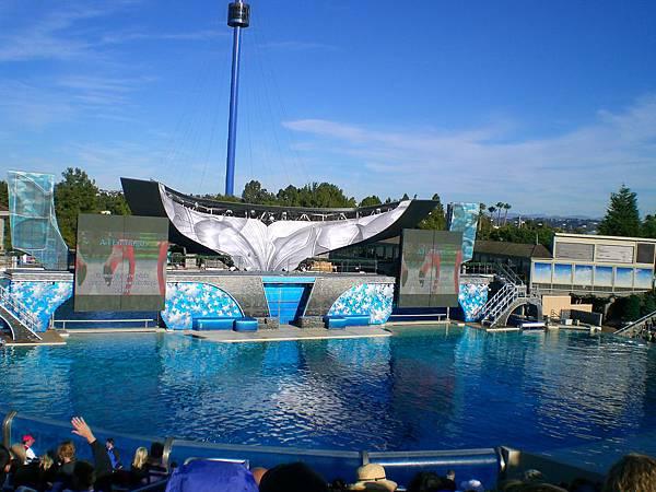 Day 9-sea world: Shamu殺人鯨的表演, 舞台很壯觀, 表演也令人感動, 大家要好好愛惜這些動物阿!