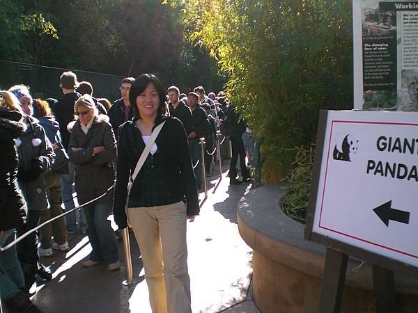 Day 8- 看熊貓的隊伍, 真的頂長的, 熊貓是動物園裡最夯的動物
