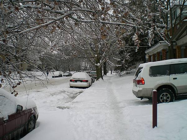 雪下的太急,清雪的單位都來不及清理