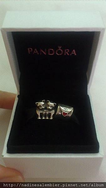 屬於自己的故事-潘朵拉手環PANDORA