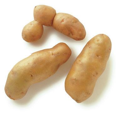 fingerling potatoes.jpg