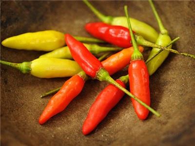 Pepper-Hot-Tabasco-HPP106-LSS-000_6902.jpg
