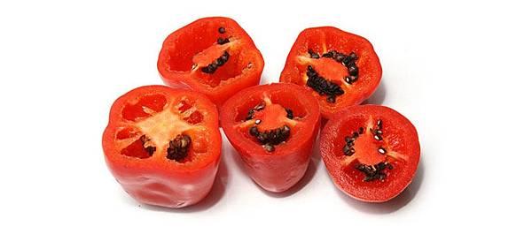 rocoto-peppers-shu.jpg