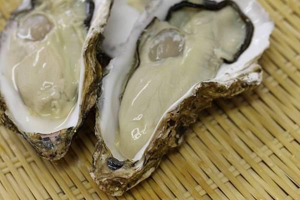 赤崎の牡蠣.jpg