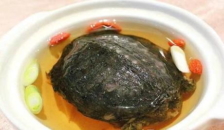 清燉马蹄鳖.jpg