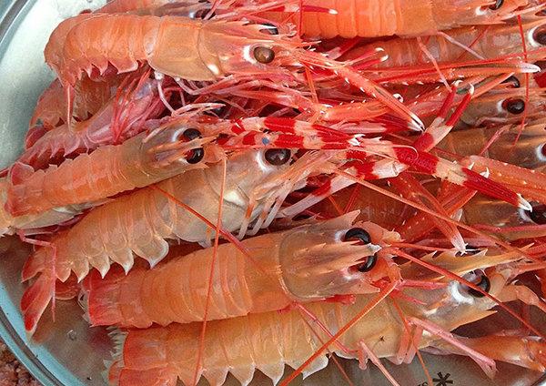 角蝦.jpg