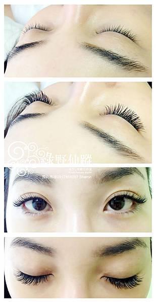 201203性感電眼風-華麗濃密型嫁接睫毛