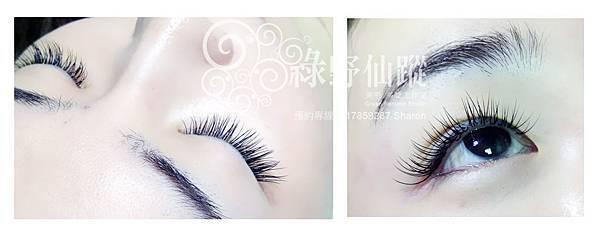 【接種睫毛】雨潔作品-自然濃密型120根T15