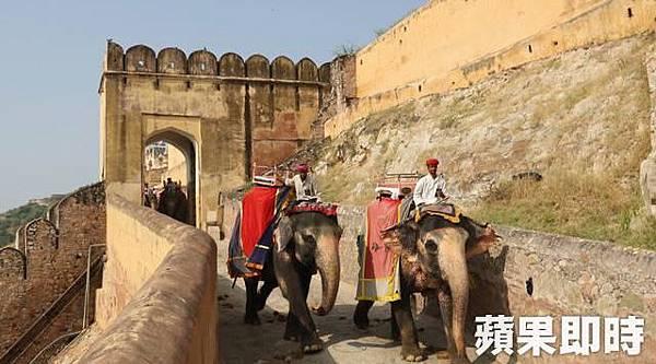 因城堡位在高處,遊客可以選擇搭乘大象登堡,動保人士當然也可以選擇步行或搭吉普車上山。 2016 蘋果日報/愛玩姐。世群旅行社