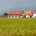 稻田與農舍