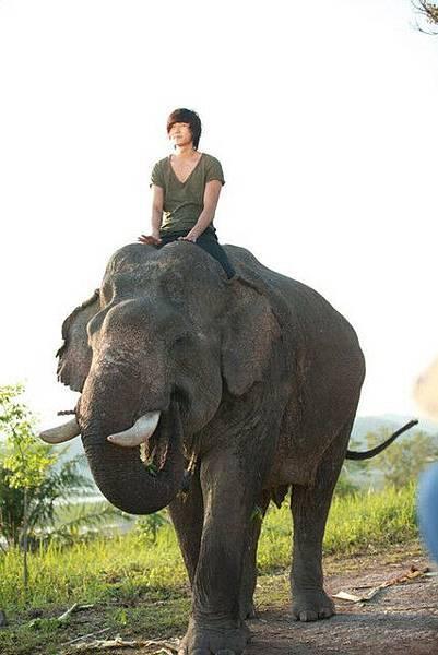 十七歲的布蔡~騎在大象上.jpg