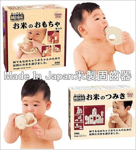 米製固齒-1