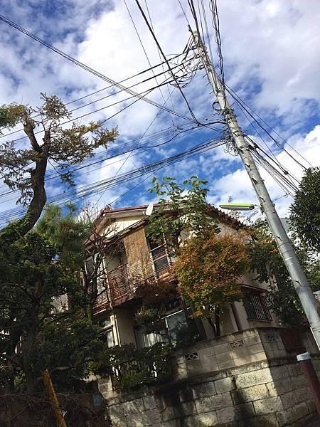 nasuoyaji07.jpg