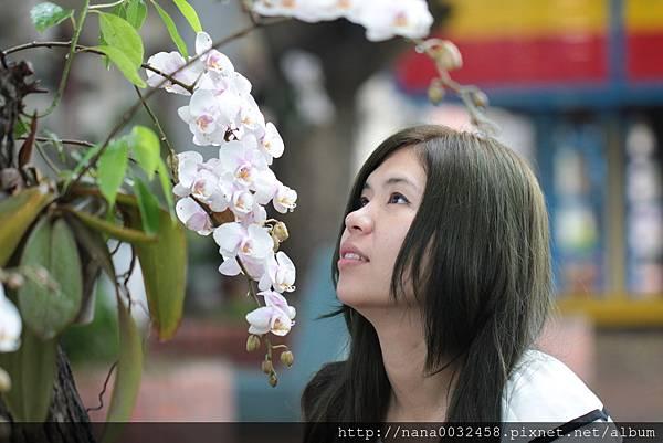 彰化市美髮店 嘉迪美時尚髮藝 (42).JPG