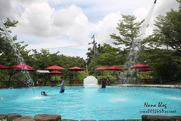 台南寵物游泳池 森 • 呼吸 Jorona Park  (11).jpg