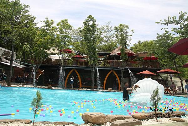 台南寵物游泳池 森 • 呼吸 Jorona Park  (12).jpg