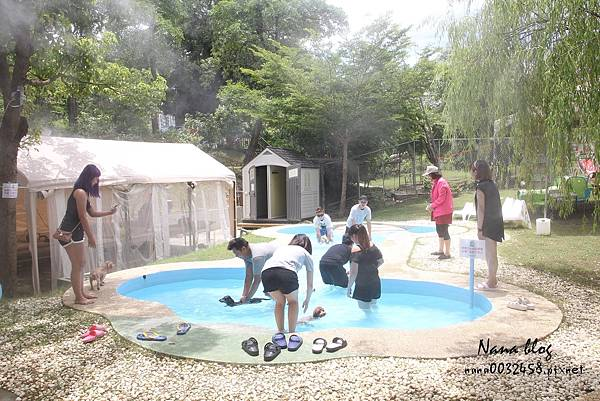 台南寵物游泳池 森 • 呼吸 Jorona Park  (17).jpg