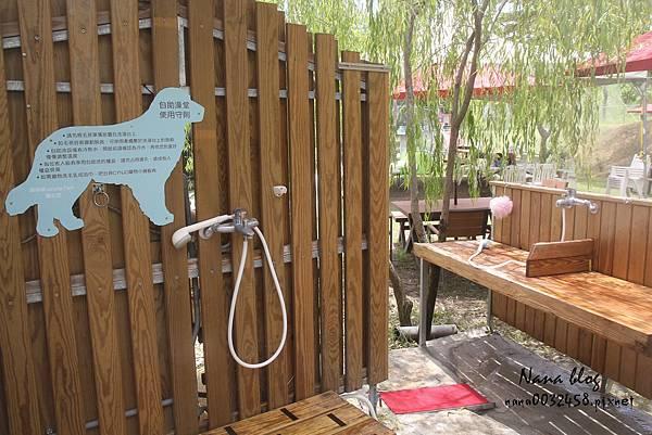 台南寵物游泳池 森 • 呼吸 Jorona Park  (18).jpg