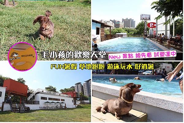 1台中寵物游泳池Boss Dog 博斯逗狗樂園 (26).jpg