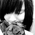 情人節的花!!
