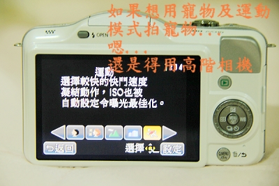 IMG_9566.jpg
