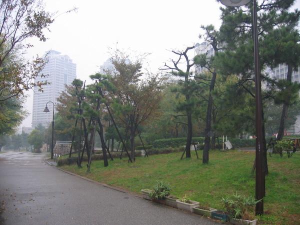 台場附近的公園