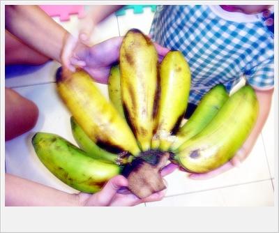 阿公種的香蕉-芭蕉.jpg